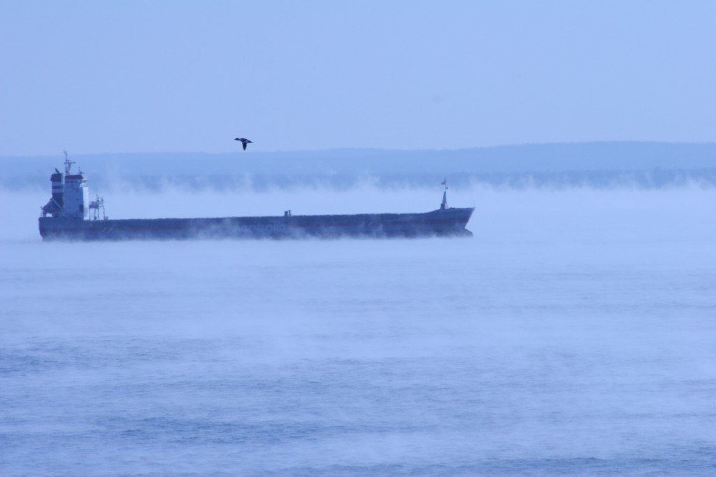 Bird flying over ship on  cold, foggy Lake Superior