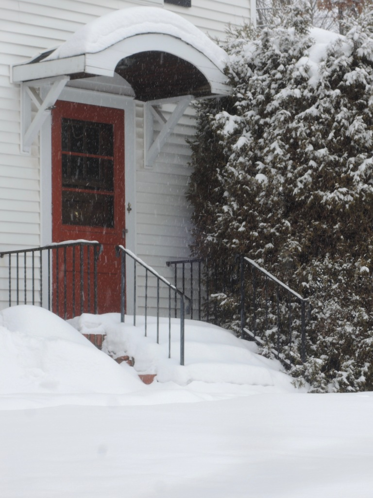 2016.01.25. ddp red door and snow - 1