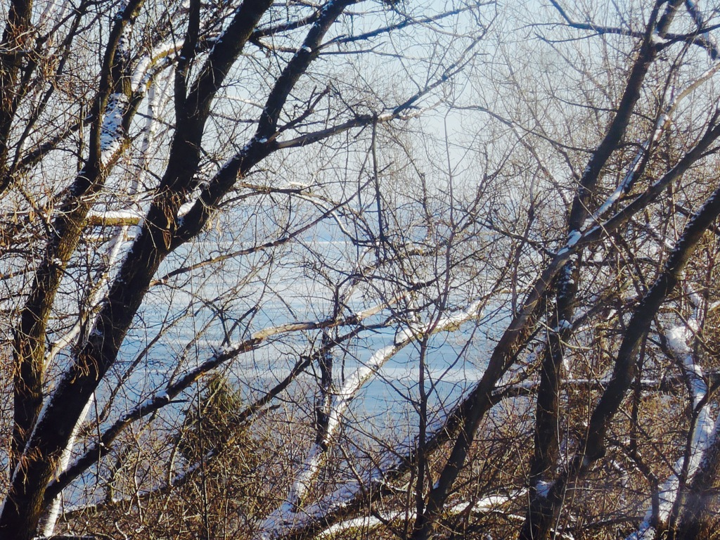 I took this photo because I liked the silver-like color of the Lake Superior and the white snow on the trees.