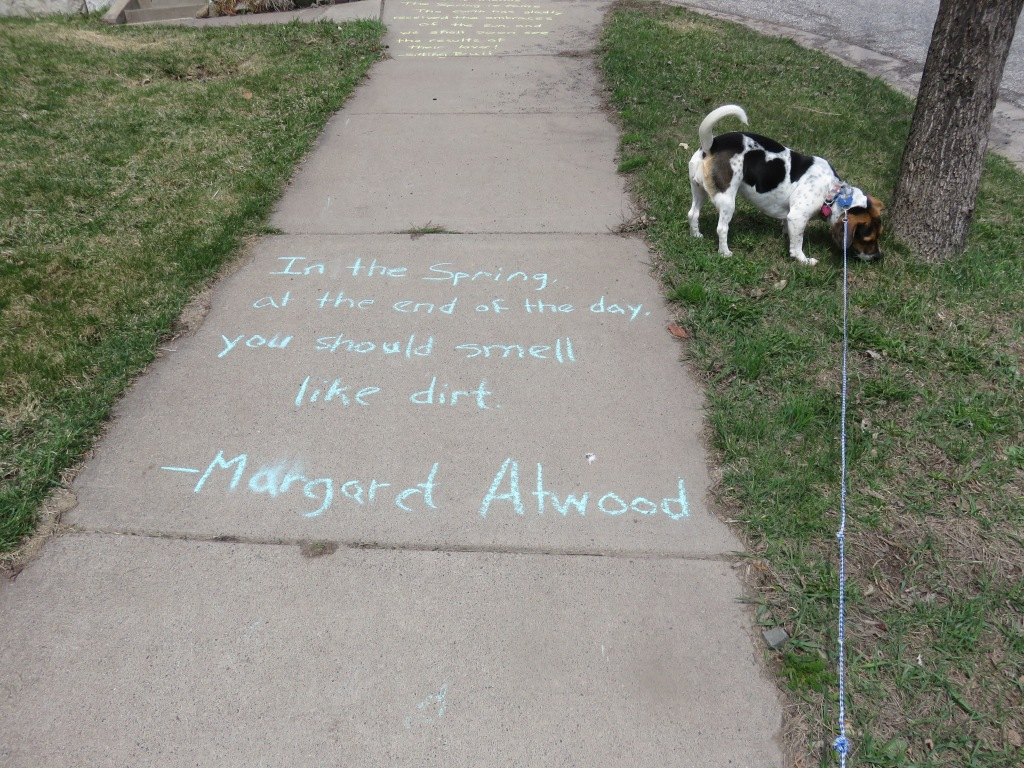 16.04.23  poem Margaret atwood .jpg - 1