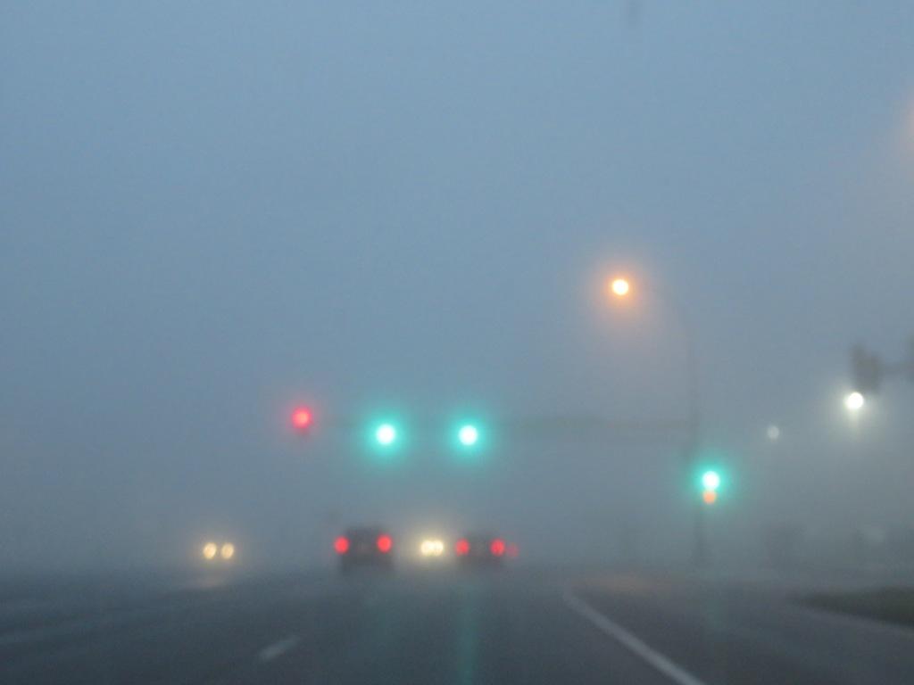 DDP.16.06.15 fog.jpg - 1